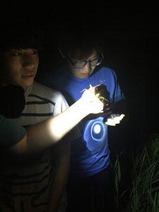 Heo Kyongman (허경만) and Bae Yoonhyuk (배윤혁)